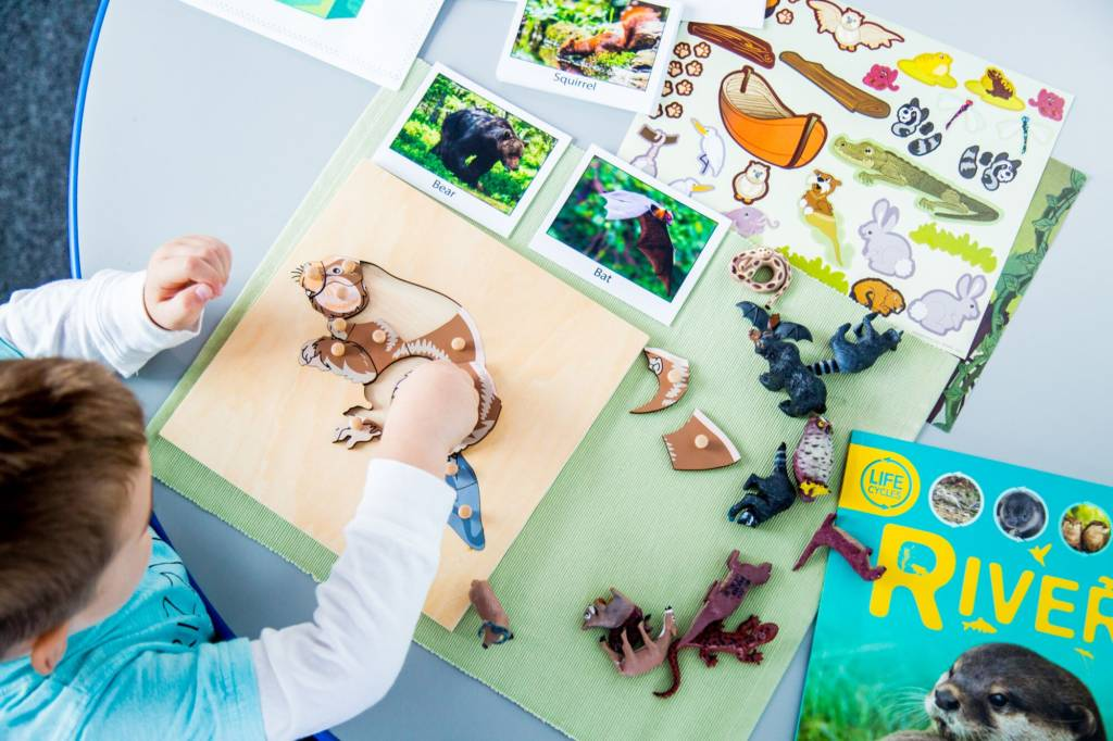 Setting Up A Montessori Classroom Get Brainy Box