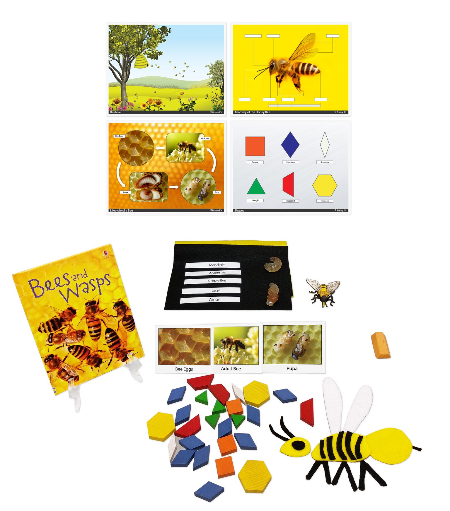 Bees And Geometry Ages 3 To 6 Get Brainy Kit