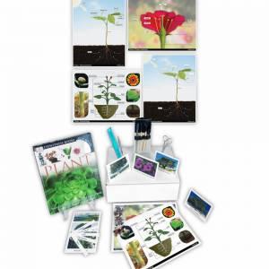plants-product-image_b