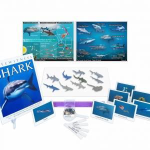 Shark-homeschool-lesson